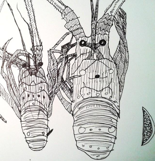Lobster by Aileen Torres-Bennett