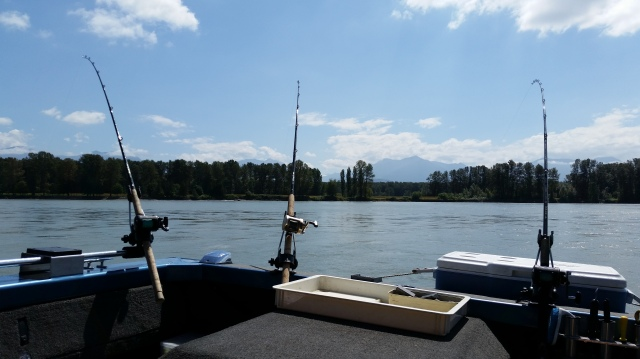 Fishing Fraser River BC