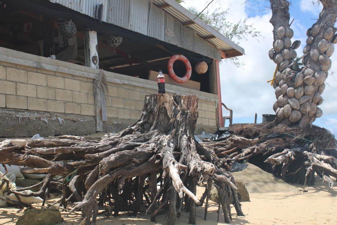 beach bar Pangaimotu Tonga
