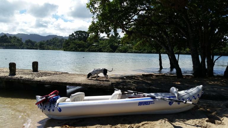 kayaking to Mosquito Island