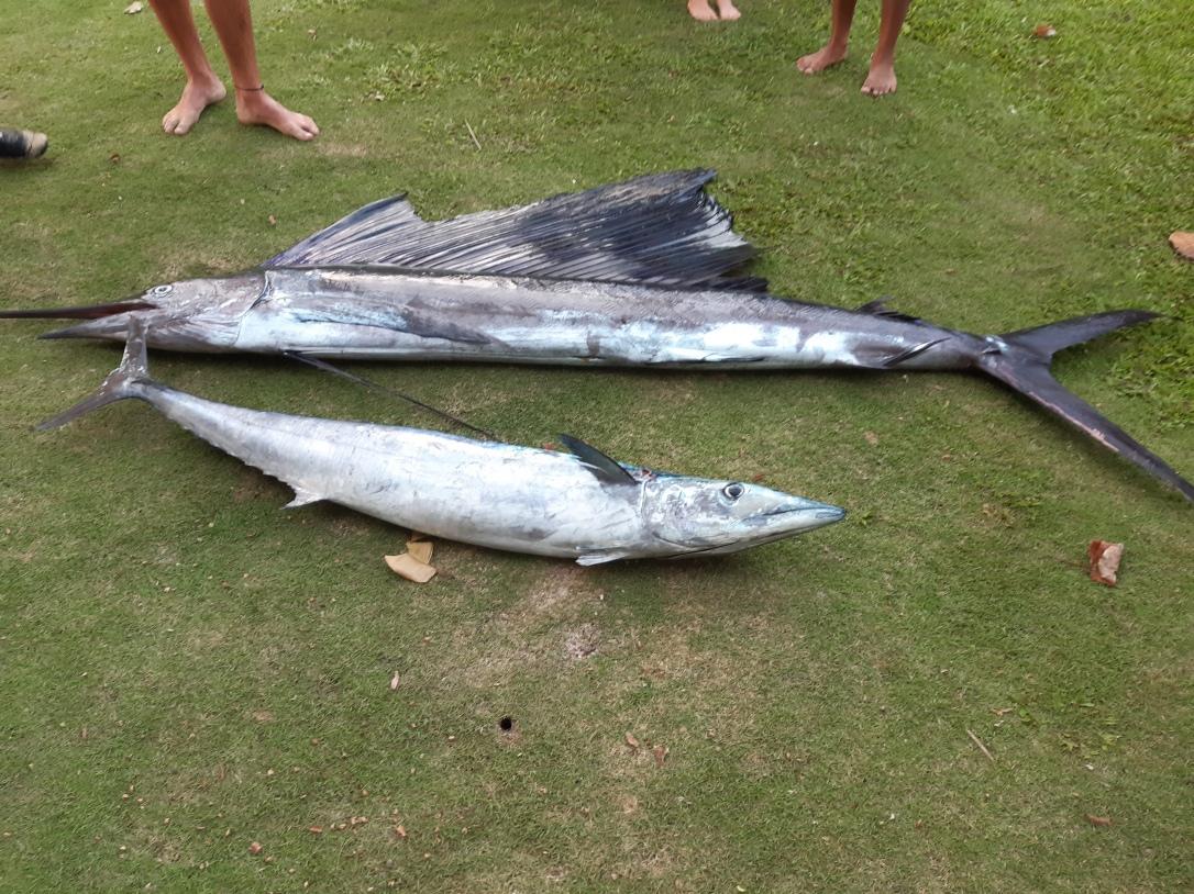 Deep sea fishing Beachouse Fiji
