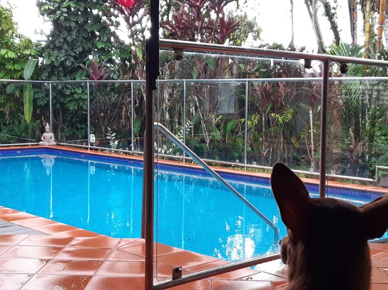 Jolene pool Fiji