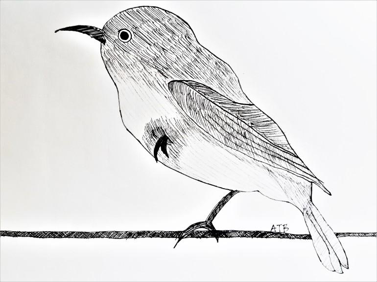 Bird on Wire ATB