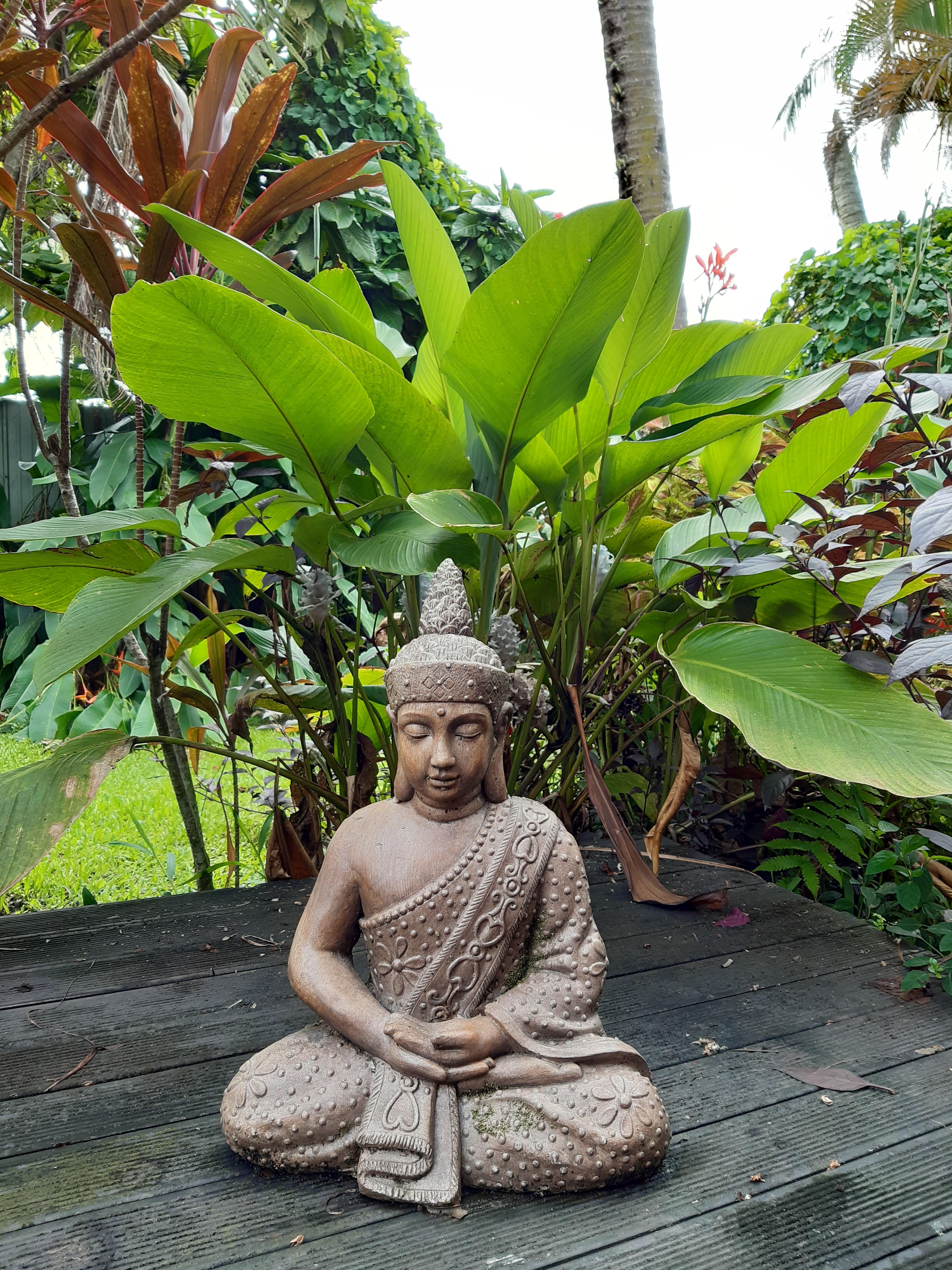 Garden Buddha Fiji
